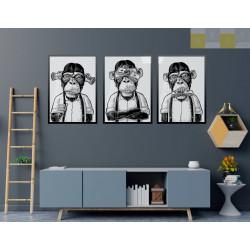 """""""Macacos ricos"""" Conjunto de..."""