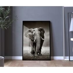 """""""Elefante"""" Quadro de decoração"""