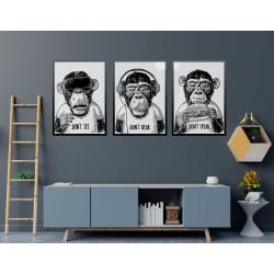 """""""Macacos sábios"""" Conjunto..."""