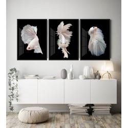 """""""Trio peixes"""" Conjunto de..."""
