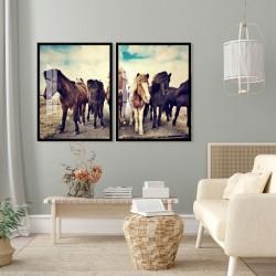 """""""Cavalos"""" Conjunto de..."""