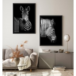 """Dupla Zebras"" Conjunto de..."