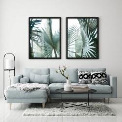 """""""Palmeira natural"""" Conjunto..."""