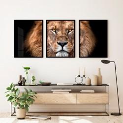 """""""Trio leão Natural""""..."""